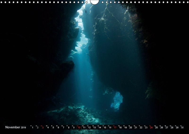 11 November Unterwasserkalender Sven Gruse taucht ab! Fische kalt erwischt 2019