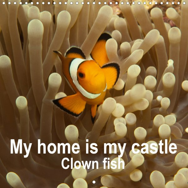 202100_Calender_2021_underwater_My_home_is_my_castle_Clownfish_cover
