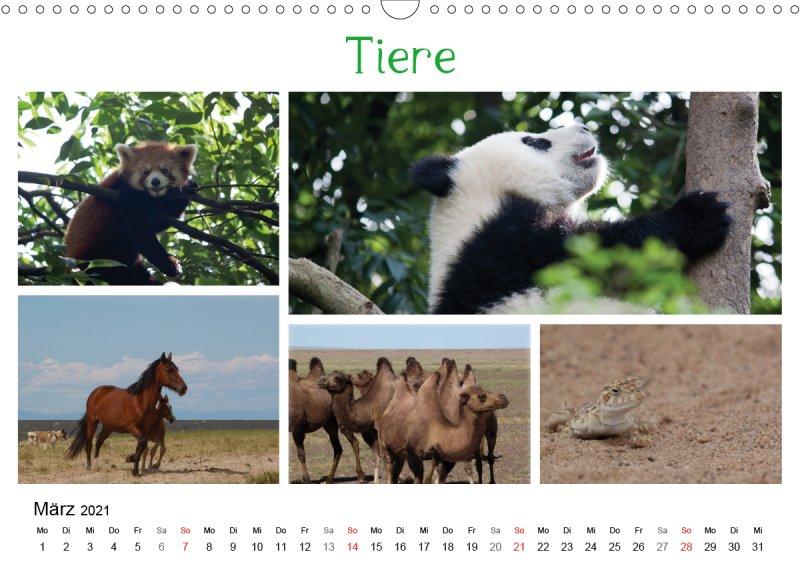 202103_Reisekalender_Die_bunte_Reise_nach_Asien_Maerz