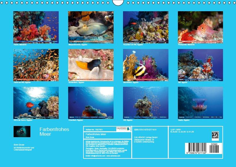 13 Cover Unterwasserkalender Farbenfrohes Meer 2019