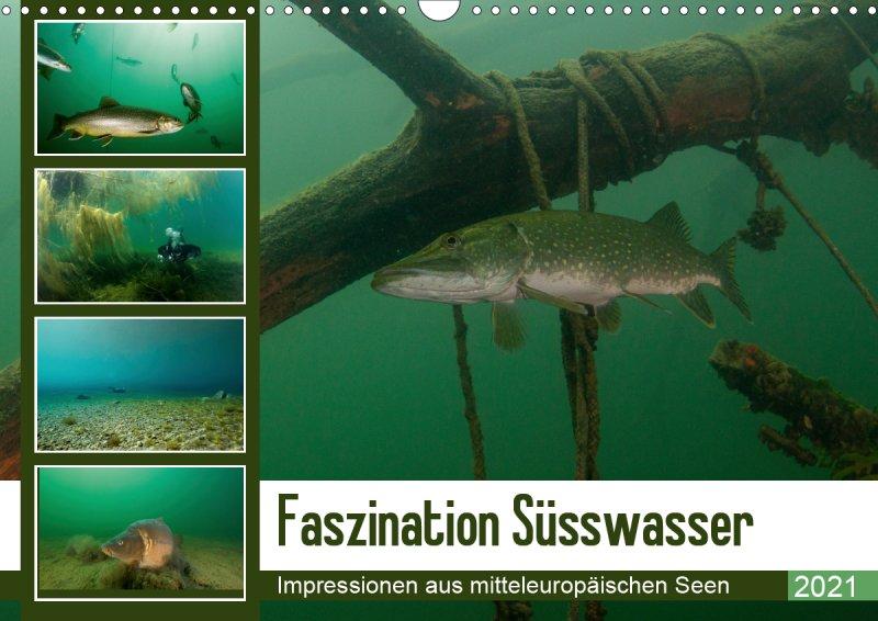 202100-Unterwasserkalender-Faszination-Süsswasser-Cover.COV_