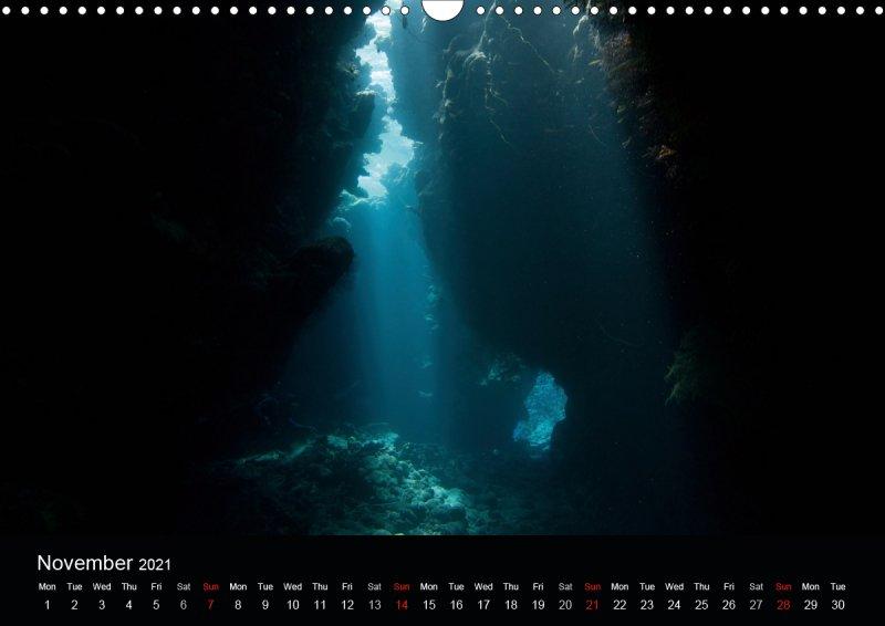 202111_underwater_calender_fishshooting_2021_november