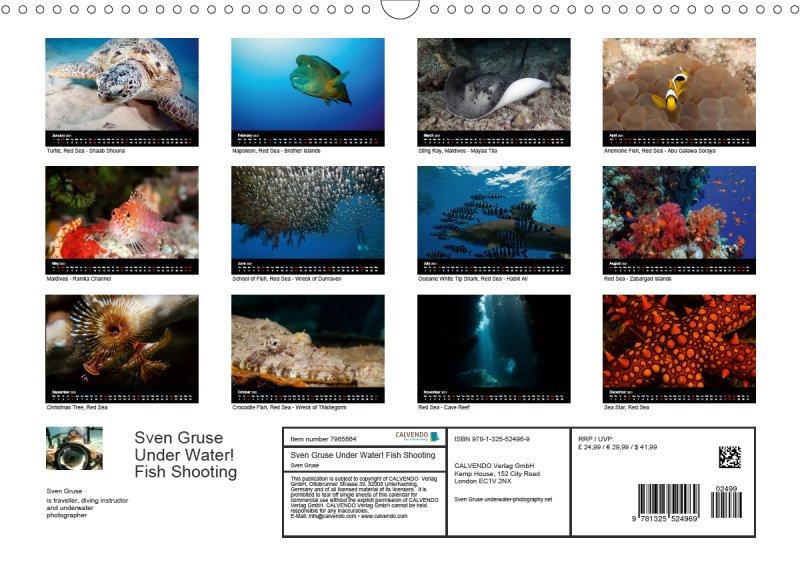 202113_underwater_calender_fishshooting_2021_index