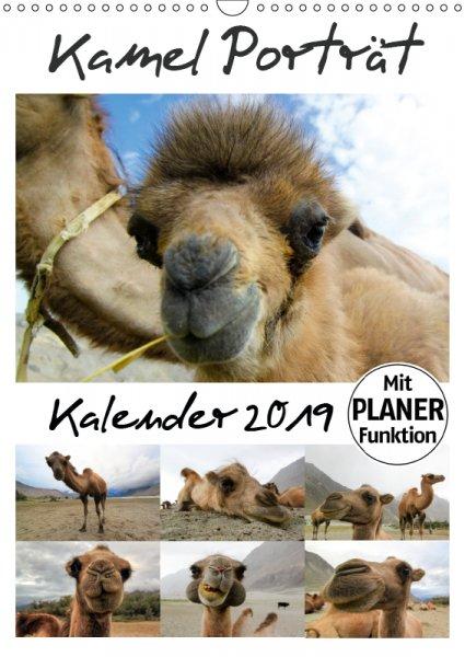 00 Cover Familienplaner Kamelporträt 2019