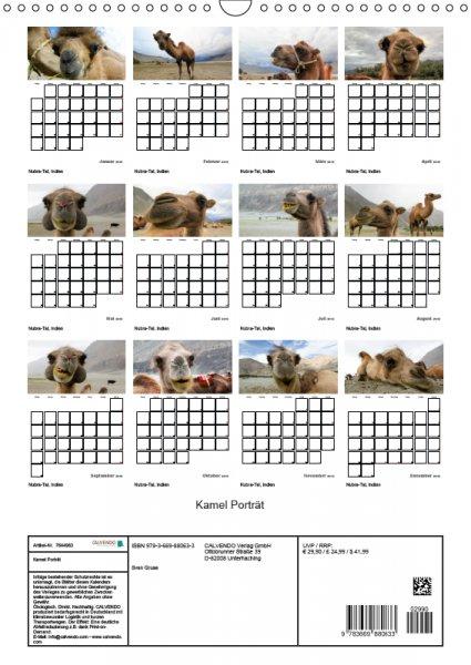 13 Index Familienplaner Kamelporträt 2019