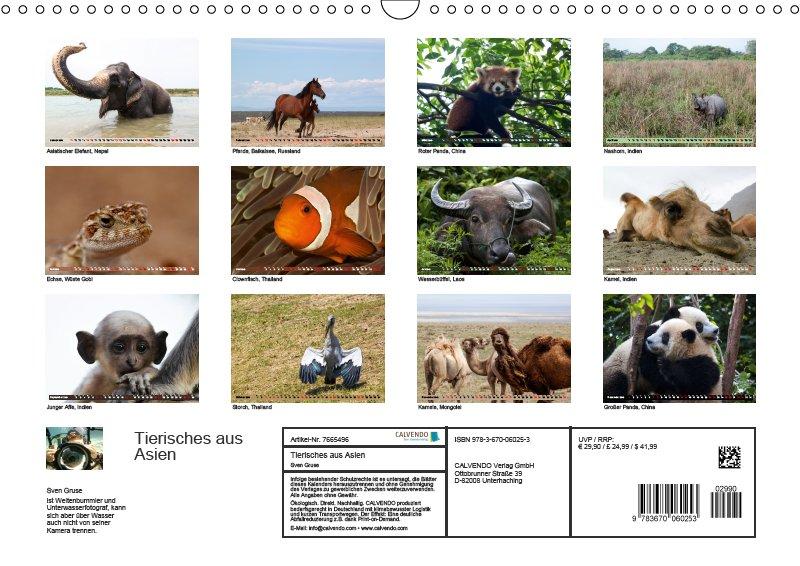 13 Index Tierkalender Tierisches aus Asien 2019