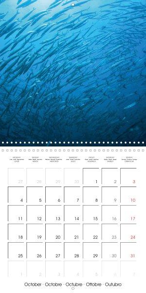 2021010_calender_2021_underwater-Highlights_October