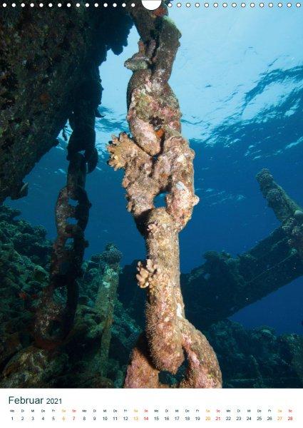 202102-Unterwasserkalender-Februar-Unter-Wasser-Daheim.COV_