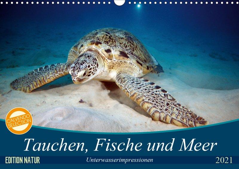 202100_Tauchen_Fische_Meer_Unterwasserkalender_Cover